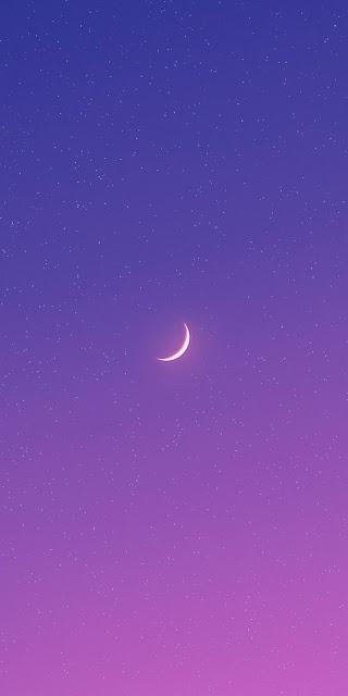 Gorgeous night sky