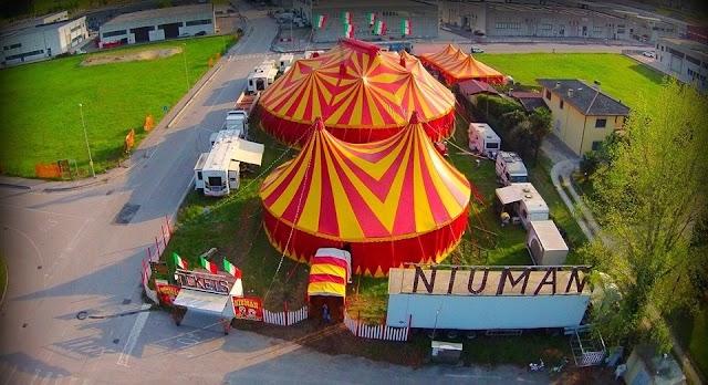 """Dopo le polemiche dell'Apas, il propietario del Circo Busnelli e Niuman comunica: """"Lo spettacolo lo facciamo, anche senza animali"""""""