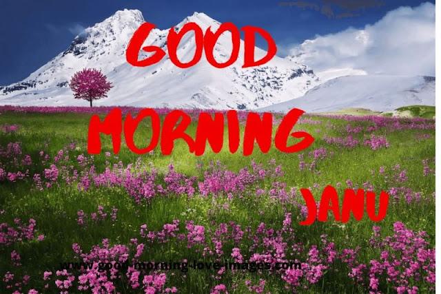 love good morning  janu