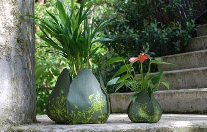 atelier chlorofil faites voir la vie en rose vos plantes en pot. Black Bedroom Furniture Sets. Home Design Ideas
