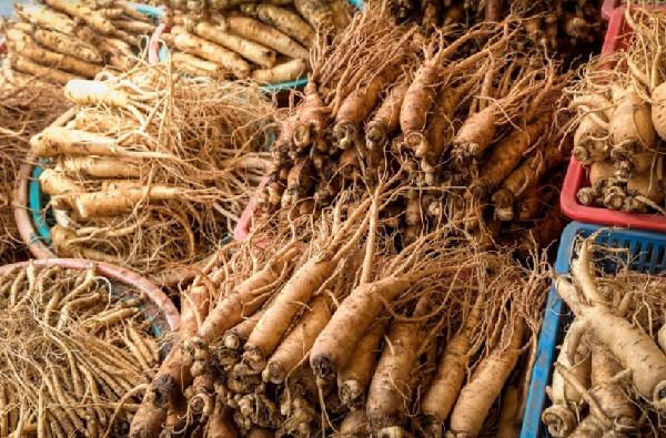 What are the benefits of ginseng for men?