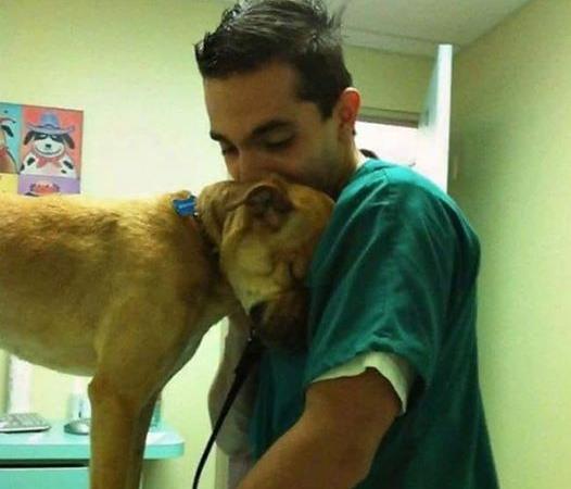 Щенок тянул меня за халат острыми зубками и словно просил не усыплять его - рассказ ветеринара!