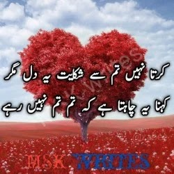 Dil E Umeed Tora Hai Kisi Ne Poetry