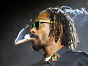 Snoop Lion - The Good Good