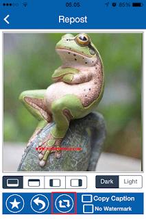 Cara Download Foto Dan Video Di Instagram iPhone 4
