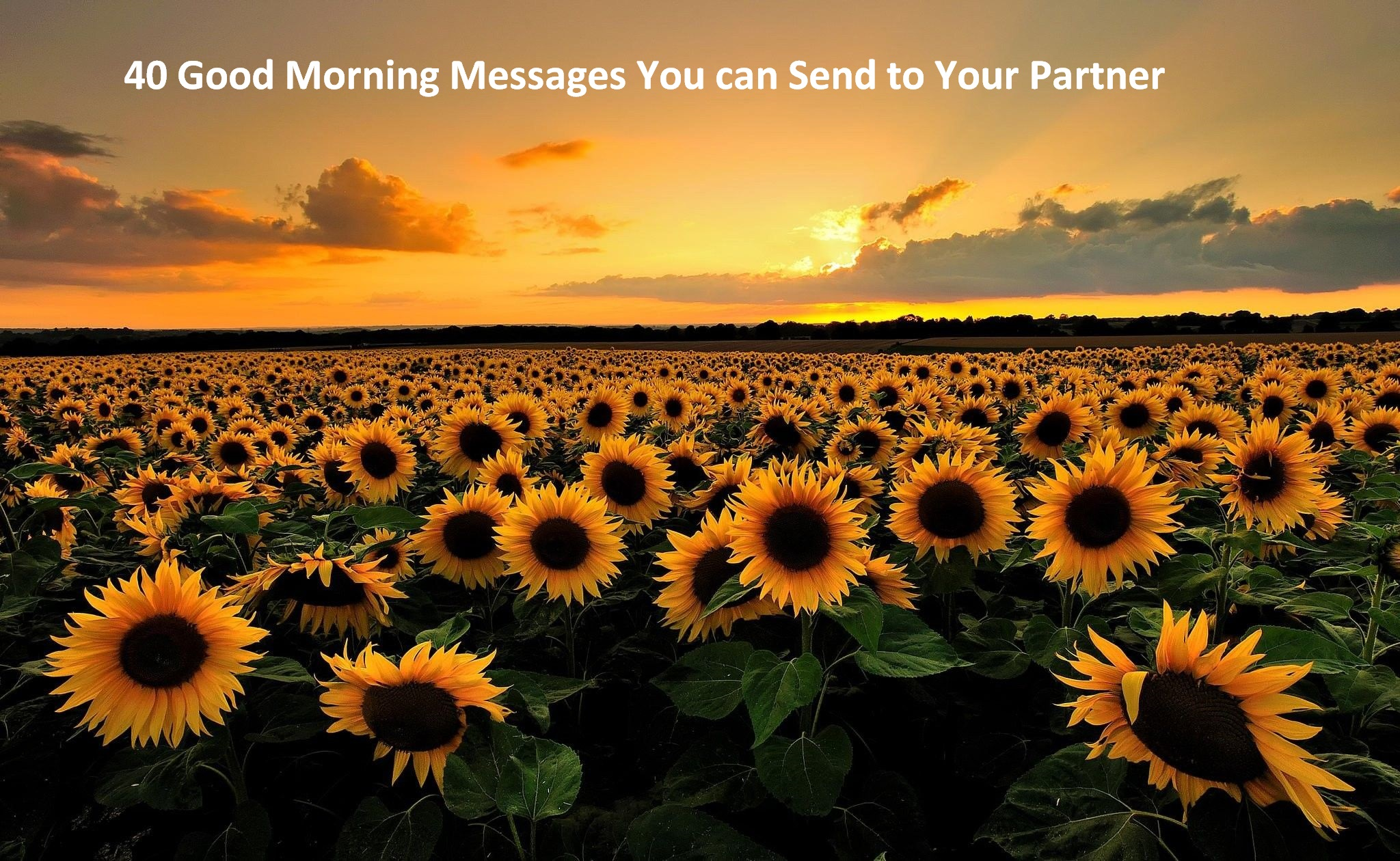 40 Good Morning Messages You can Send to Your Partner
