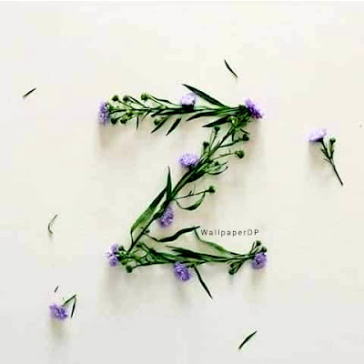 Real flower Unique A to Z Alphabet dp pics for Whatsapp Facebook