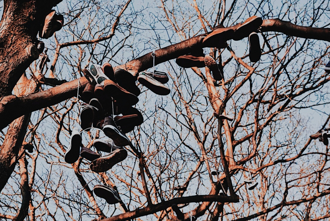 DENE-JESMOND-NEWCASTLE-ALMOSTABLOGGER-BLOGGERS-SHOE-TREE.jpg