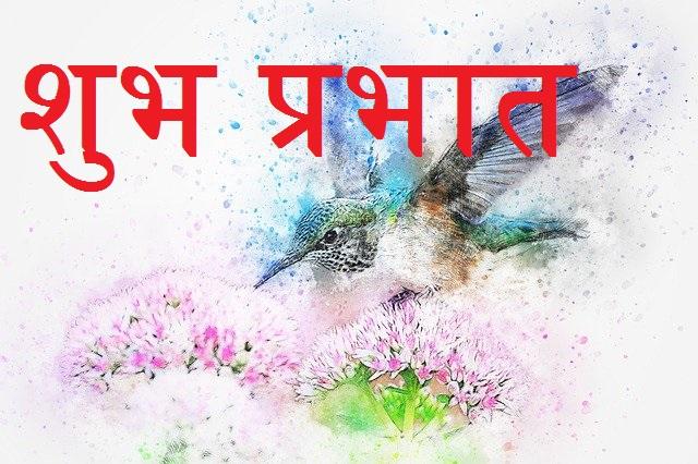 Good Morning in hindi with Bird
