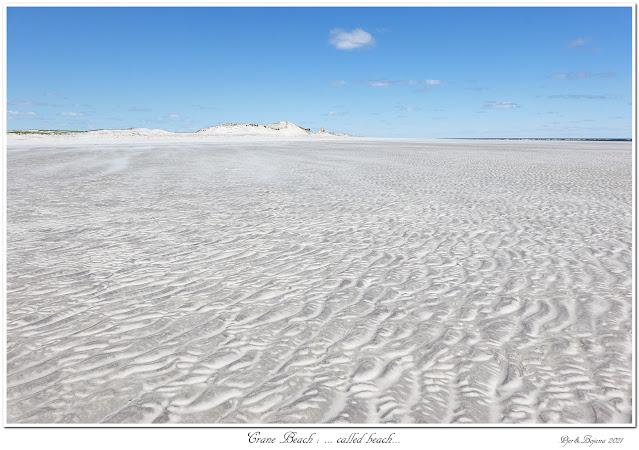 Crane Beach: ... called beach...