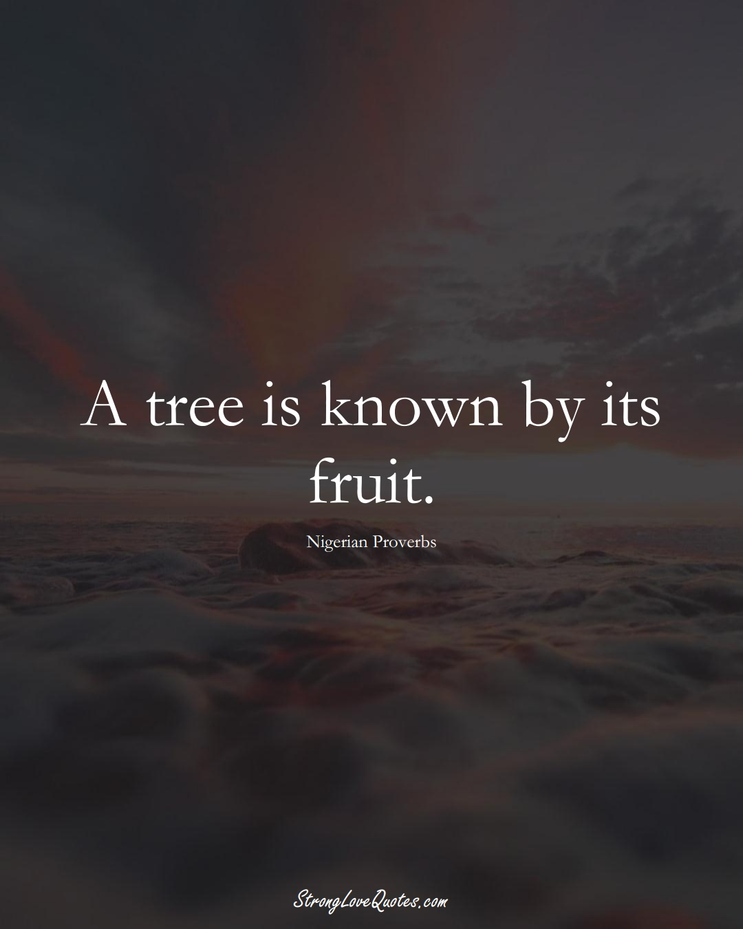 A tree is known by its fruit. (Nigerian Sayings);  #AfricanSayings