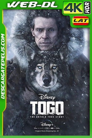 Togo (2019) 4k WEB-DL HDR Latino – Ingles