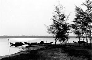 Đậu thuyền trên bãi Hồng Phong
