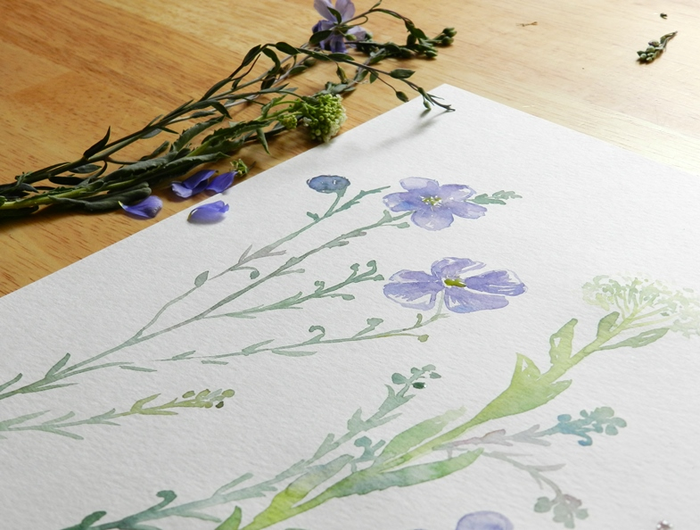 Original Watercolor Wildflowers by Elise Engh: Grow Creative