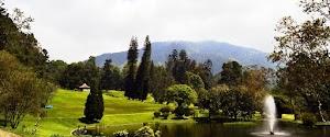 Cibodas Botanical Gardens of Cianjur