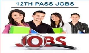 12th Pass out Freshers Candidates Jobs Vacancy For MNC Company Delhi NCR, Haryana, Maharashtra , Himachal Pradesh Locations
