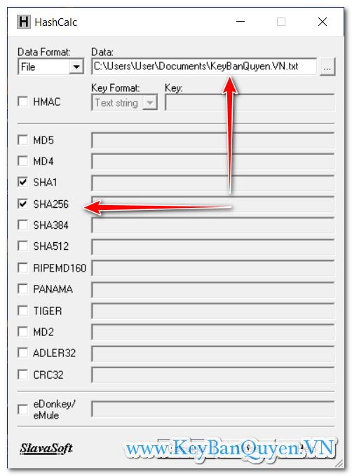 Hướng dẫn kiểm tra mã MD5 , SHA1, SHA 256, SHA384, SHA 512, MD4, Tiger, MD2 , CRC32 , ADLER32 nhỏ gọn.