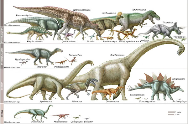 Sejarah Pembagian Zaman Dinosaurus