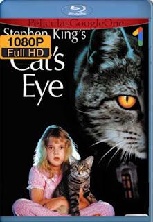 Los Ojos Del Gato  [1080p BRrip] [Latino-Inglés] [GoogleDrive] LaChapelHD