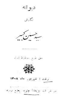 دیوانه - سید حسین کبیر