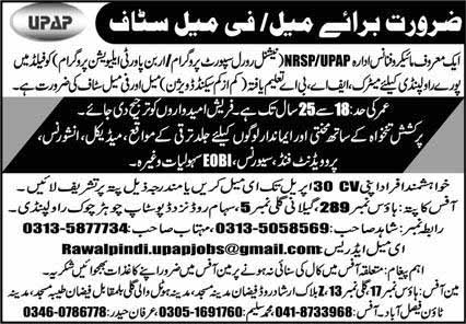 Male Female Staff required in Rawalpindi