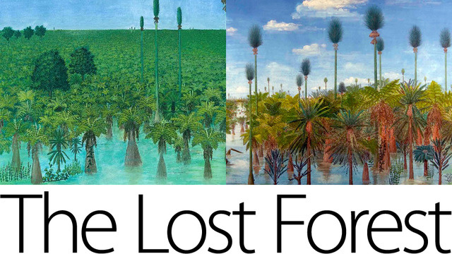 Hutan Berusia 298 Juta Tahun Ditemukan Utuh