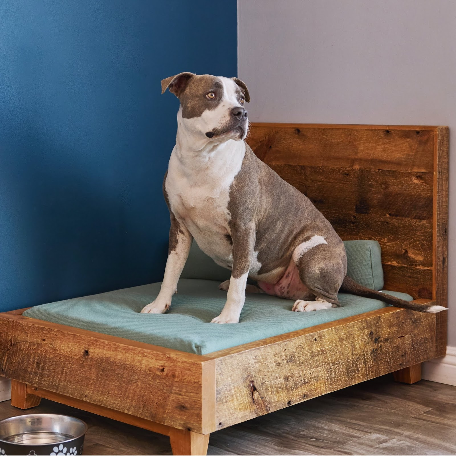 sustainable pet beds