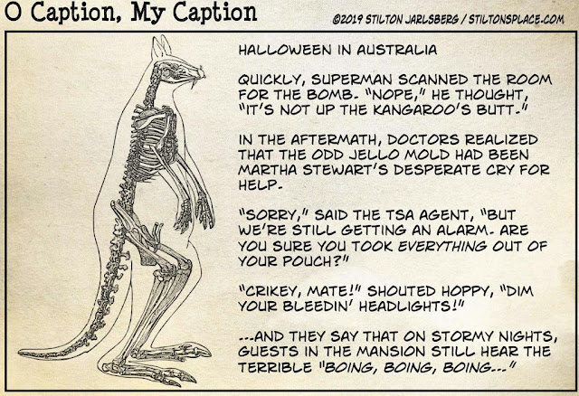 stilton's place, stilton, political, humor, conservative, cartoons, jokes, hope n' change, earwigs, kangaroo, caption