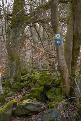 Felsentour Herbstein | Extratour Vogelsberg | Wandern in Hessen 26