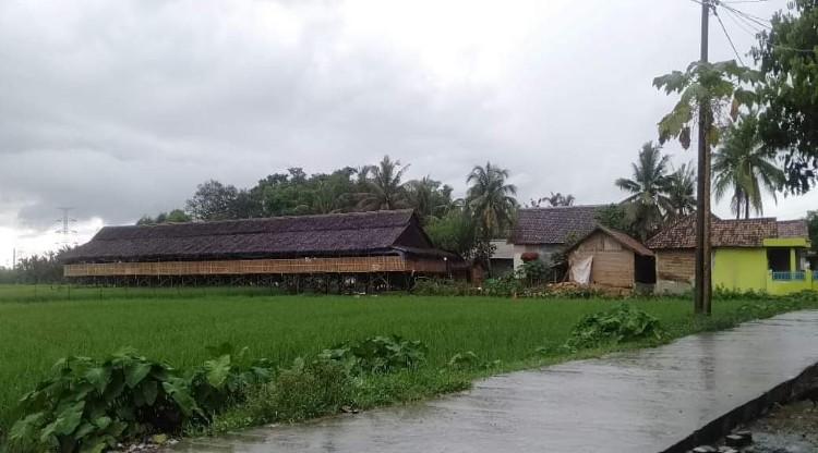 Keluhan Warga Soal Keberadaan Kandang Ayam Dekat Pemukiman di Desa Ketos