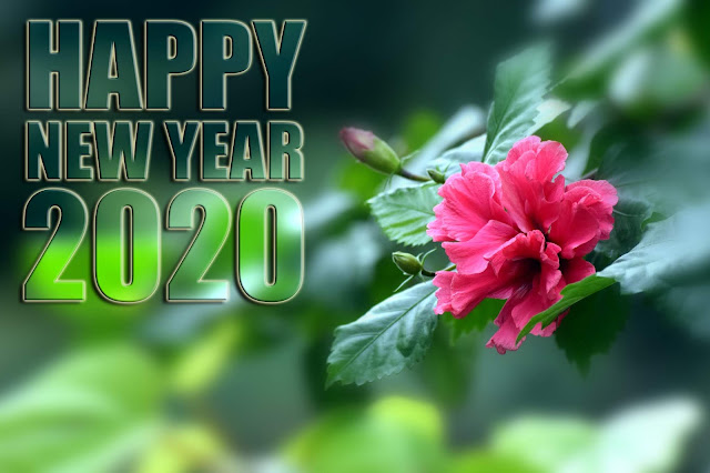 happy new year 2020 photo, wishes, greeting, 4k image,