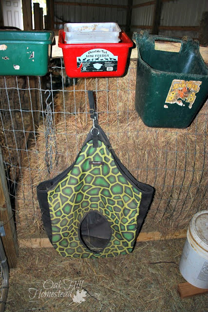 The narrow space behind the gate is perfect for storing flat or thin items like a hay bag.