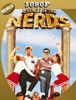 La venganza de los nerds (1984) REMUX [1080p] Latino [GoogleDrive] SilvestreHD