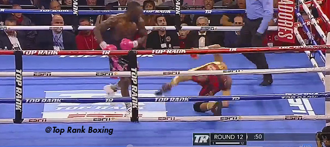 Terence Crawford's BRUTAL Knockout of Jose Benavidez (VIDEO)