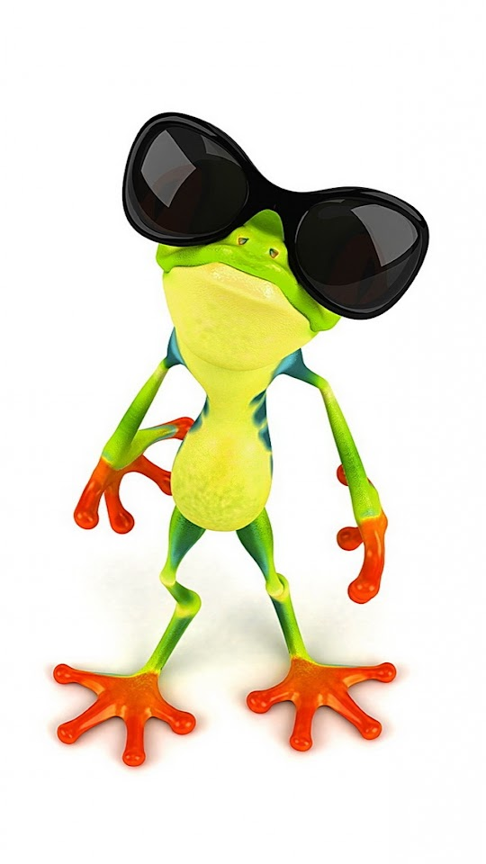 Funny Frog with Sunglasses   Galaxy Note HD Wallpaper
