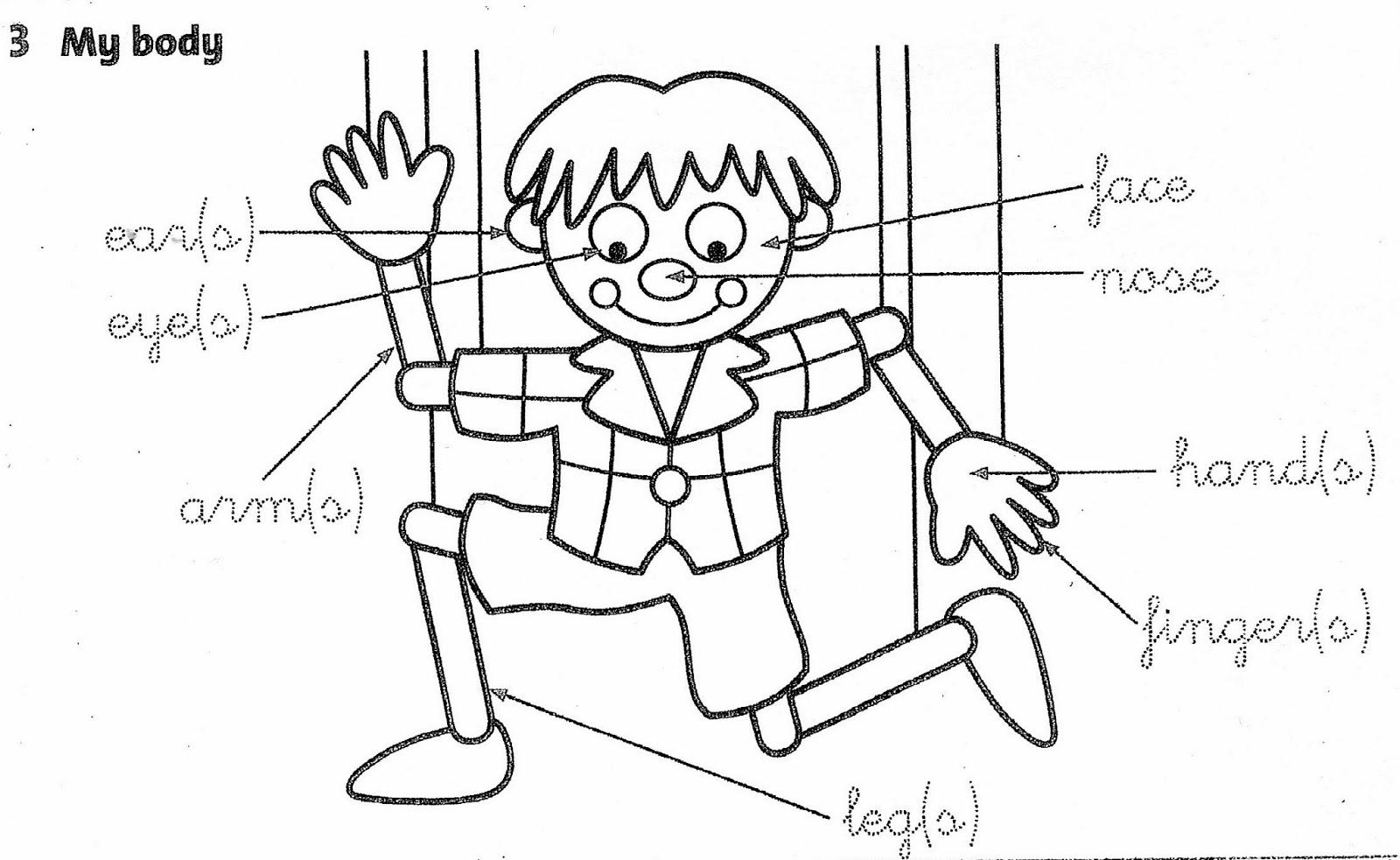 Preschool coloring pages body parts
