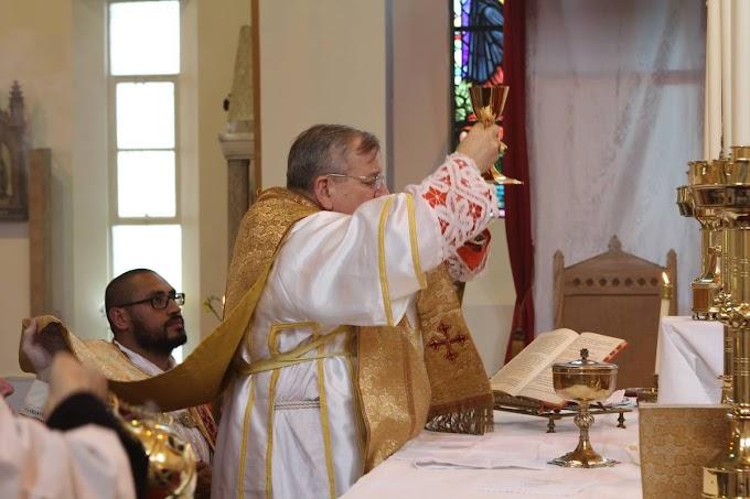 Declaração do Cardeal Burke sobre as celebrações na Basílica de São Pedro