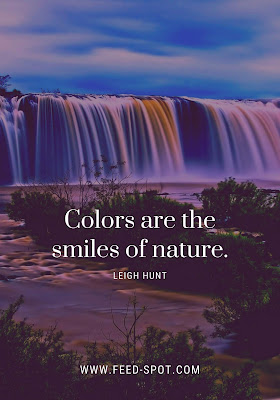 Colors are the smiles of nature. __ Leigh Hunt