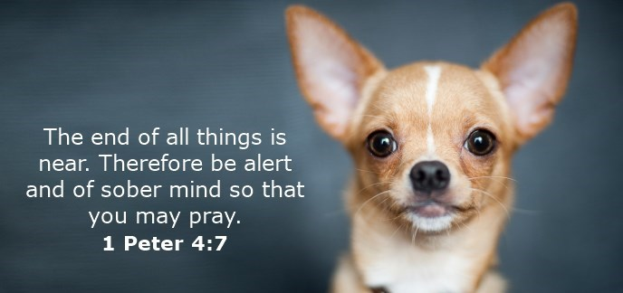The end of all things is near. Therefore be alert and of sober mind so that you may pray.