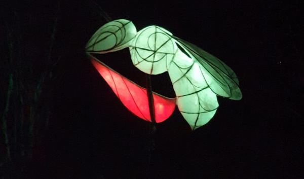 Wasp illuminated at Wakehurst Glow Wild Trail