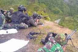 Suriastawa Ungkap Kontak Senjata Antara Satgas dan Kelompok Separatis di Titigi