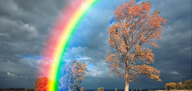 ظاهرة اللون من ظواهر الضوء