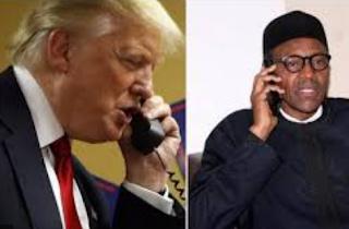 Stop protesters, bring back peace - Buhari tells Trump