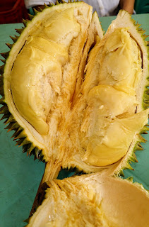 durian king of fruits