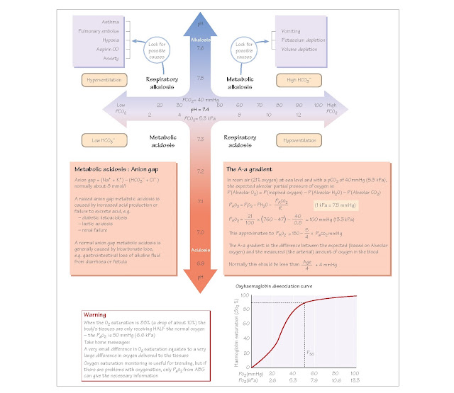 Blood Gas Analysis, Arterial blood gases, Indications for blood gas measurement, Oxygenation, The A-a gradient, Pulse oximetery, Acid–base disturbance,