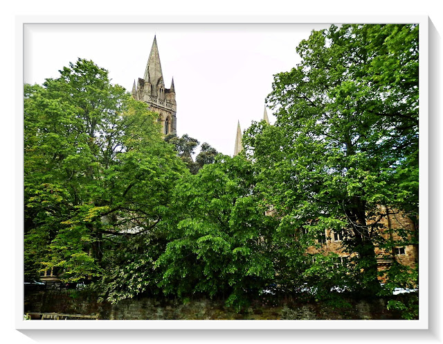 Looking through the trees at Truro Cathedral, Cornwall