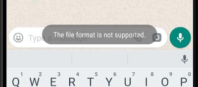 Cara Mengatasi Format File Whatsapp Tidak di Dukung