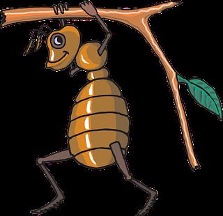 Khotbah Kristen Singkat Belajar dari Semut