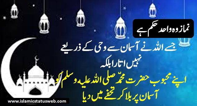 New Islamic Quotes - Islamic Status For Whatsapp