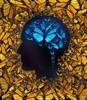 bron: https://www.bibliotheek.nl/thema/innovatie-en-maatschappij/het-brein/hoe-werkt-het-brein--hoe-train-je-je-brein-.html